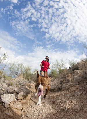 dog hiking in arizona