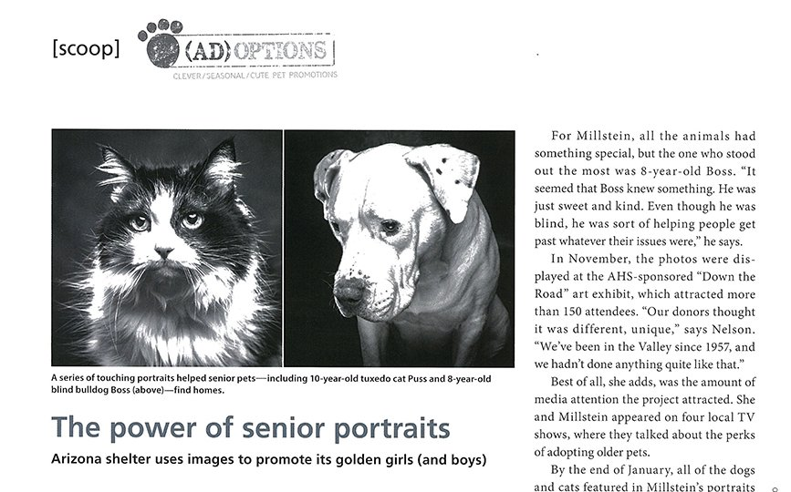 The Power of Senior Portraits-Pet Photography